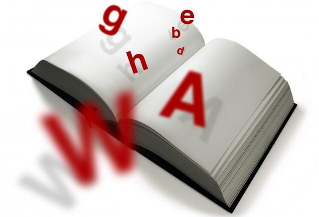Dicționar de termeni