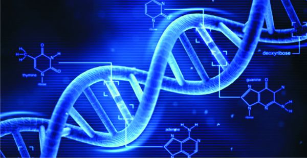 Descoperire, o mutaţie genetică conferă imunitate naturală împotriva SIDA