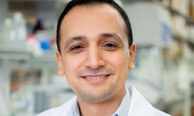 Moleculele de zahăr prezente pe suprafața celulelor imune identifică celulele T în care se ascunde HIV